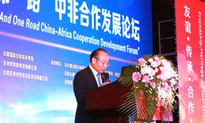 中国非洲经贸投资促进会会长秦金玮致辞